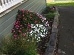 garden-in