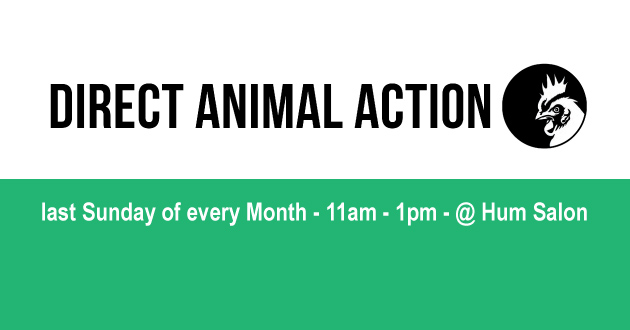 Direct-Animal-Action-Web-630-330